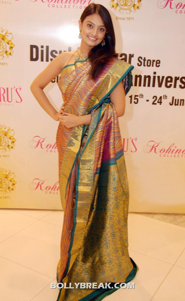 nikitha narayan posing in a traditional silk sari - (5) - Nikitha Narayan saree photos