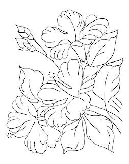 hibiscos flores