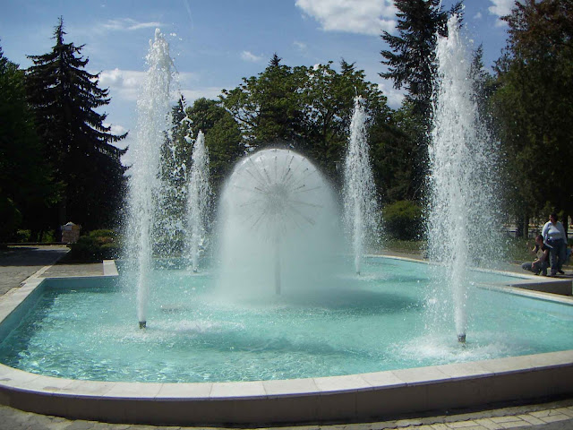 Dandellion Fountain Ternopil West Ukraine