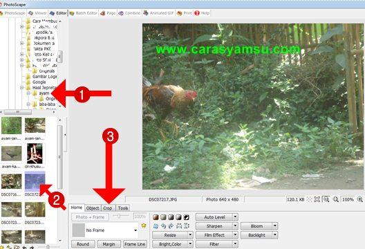 Cara Meng Crop Foto di Photoscape