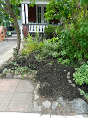 Riverdale Toronto front garden cleanup after Paul Jung Gardening Services