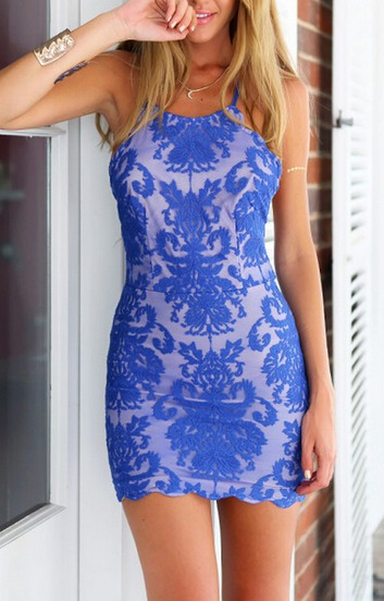 http://www.sheinside.com/Blue-Spaghetti-Strap-Backless-Lace-Embroidered-Bodycon-Dress-p-210847-cat-1727.html?aff_id=1459