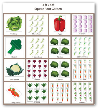 Eat Live Grow Paleo Square Foot Gardening Planning