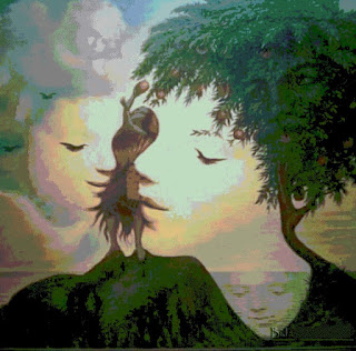 How Many Faces Illusion