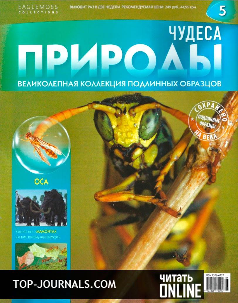 Журнал чудеса природы смотреть онлайн