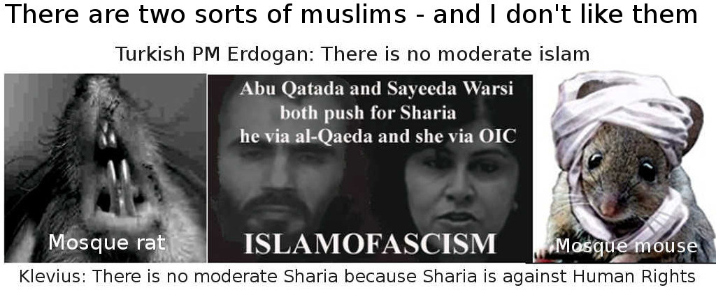Sayeeda Warsi like all sharia muslims is against basic Human Rights