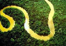 Śmierć w Amazonii, Domosławski A, Okres ochronny na czarownice, Brazylia, Carmaniola