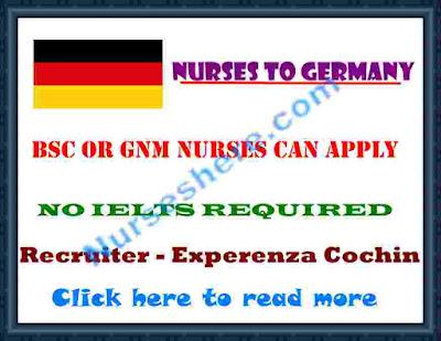 http://www.nurseshere.com/2015/07/nurses-settle-in-germany-july-2015.html