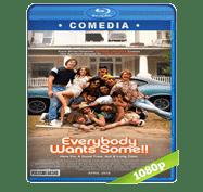 Todos Queremos Algo (2016) Full HD BRRip 1080p Audio Dual Latino/Ingles 5.1