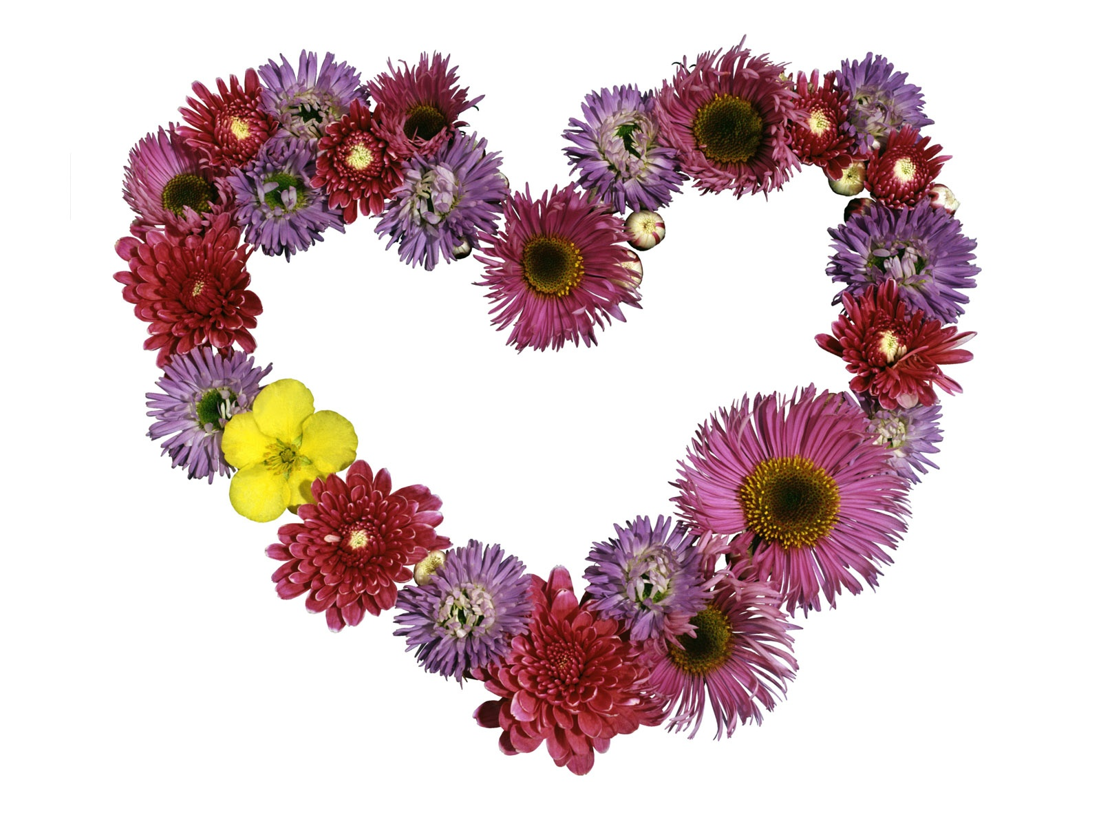 Fondo de pantalla de un corazón hecho de muchas flores diferentes.