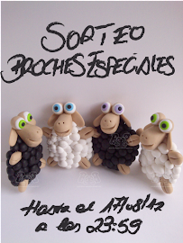 Broches Especiales
