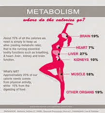 How To Fast Boost Your Metabolism