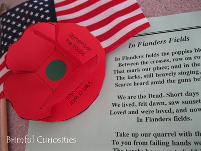 fa20238d Even without the written reminders under the leaves, the poppy itself  serves as a way to help remember the fallen heroes. A woman named Moina  Michael wrote ...