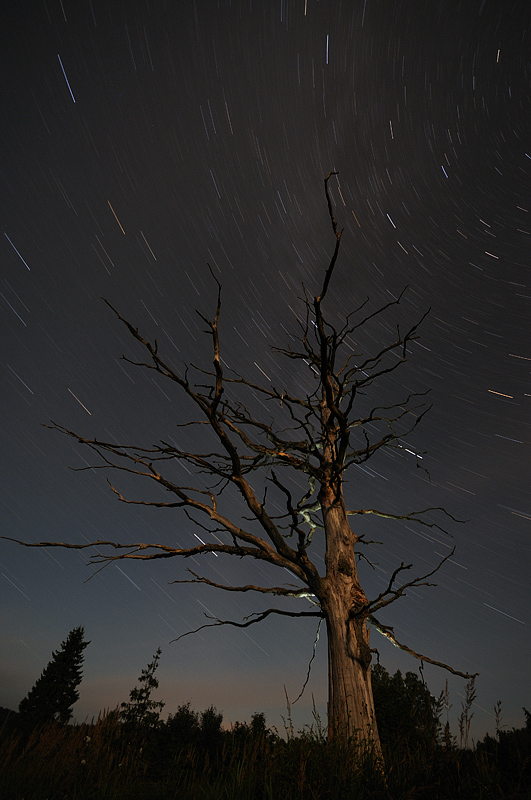 täheread, star trails
