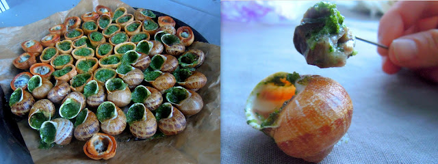 escargot in shells