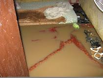 floods in Ghana