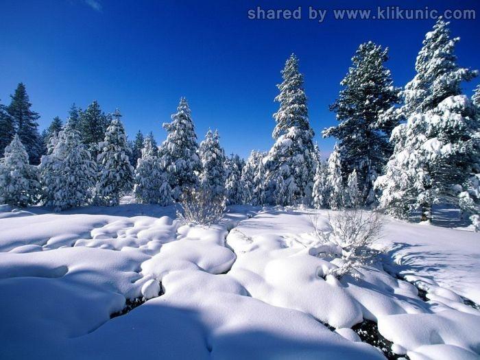 http://3.bp.blogspot.com/-2taTtShE1dU/TXLflrv83iI/AAAAAAAAP6U/L9056ERBNao/s1600/winter_06.jpg