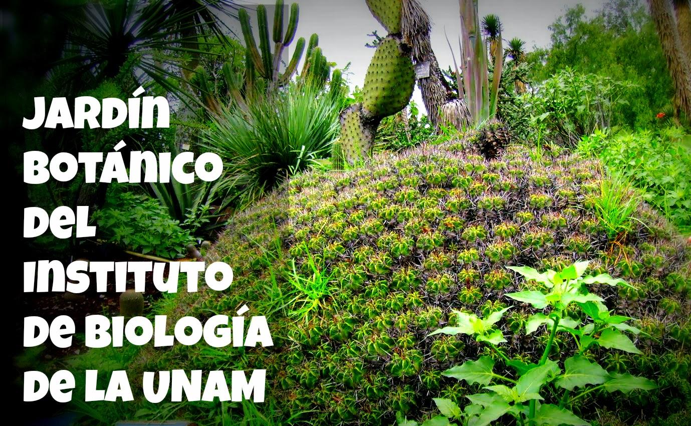 301 moved permanently for Actividades en el jardin botanico