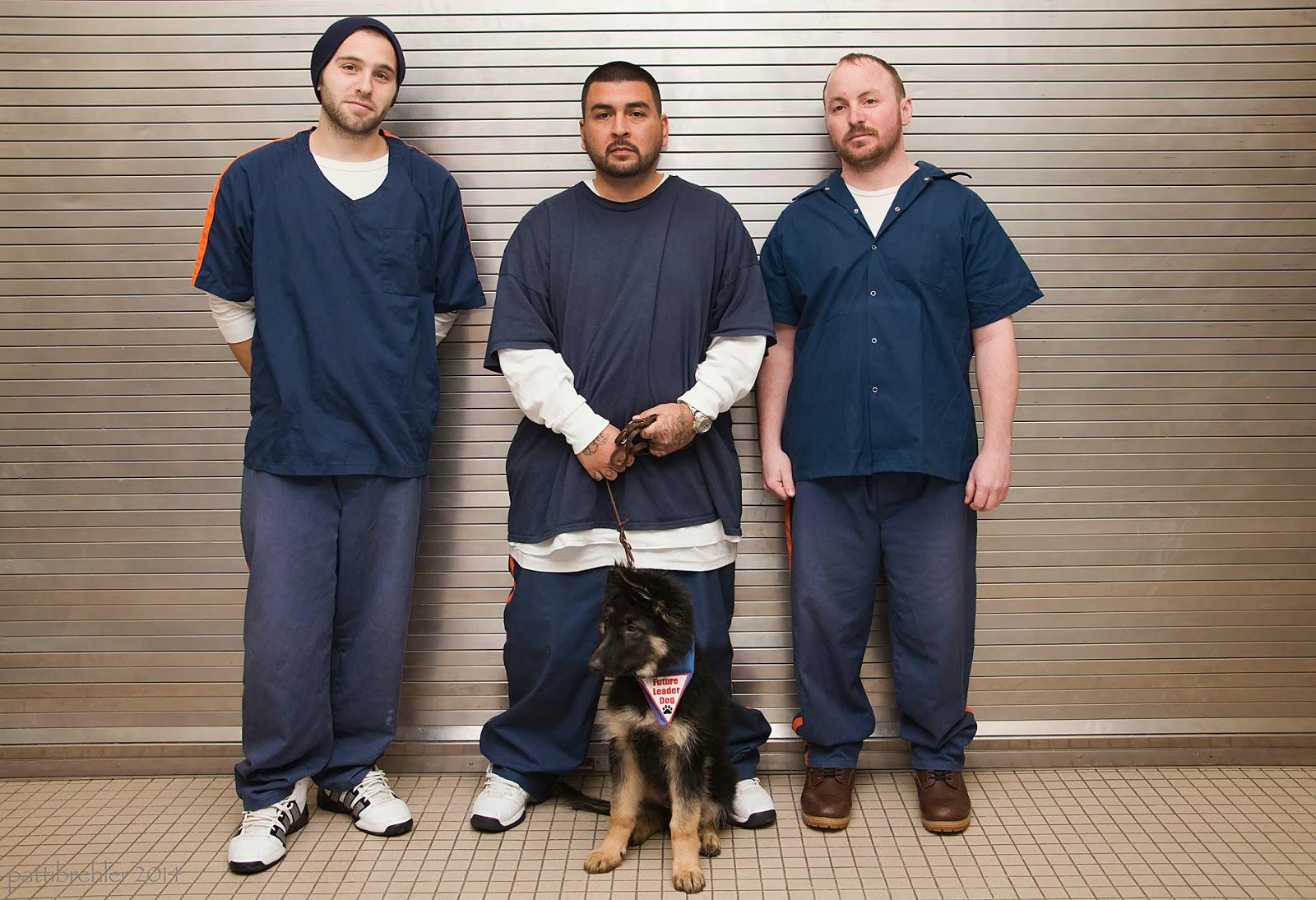 Three men are standing in front of a steel wall. They are wearing blue shirts and pants with white undershirts. The man on the left is wearing a blue knit hat. The one in the middle is holding hte leash of a german shepherd puppy that is sitting on the floor in front of him. The puppy has the blue bandana on.