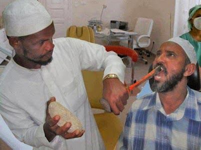 Dental Doctor