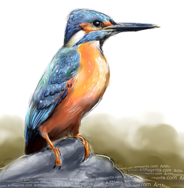 En fågelmålning av en kungsfiskare från Artmagentas svenska galleri om fåglar