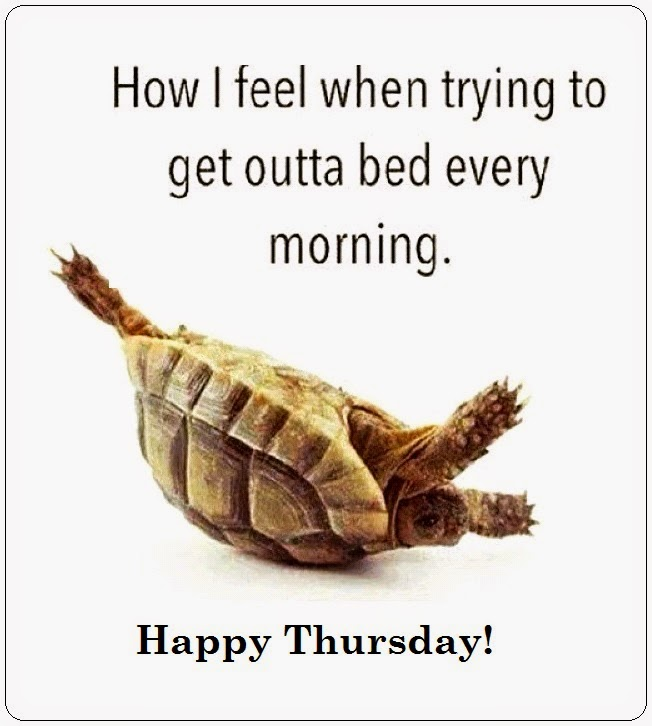 Funny Thursday Morning Meme : Happy thursday quotes with photos