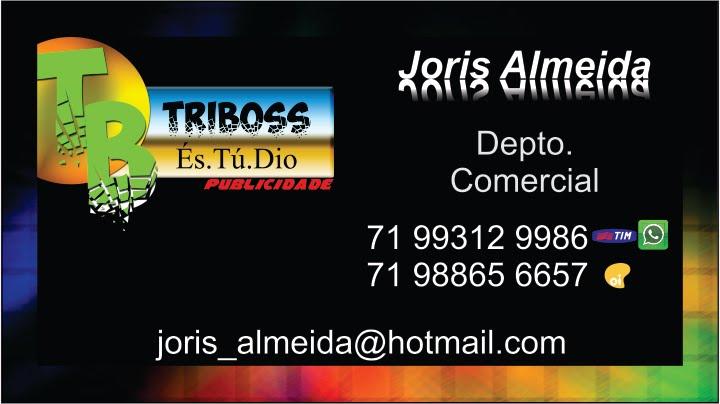 TriBOSS Publicidade