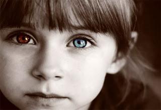 jane elliot blue eyes brown eyes Blue eye / brown eye is an experiment first performed in the usa by jane elliot in 1968 those with blue eyes and those with brown blue eye brown eye activity.