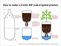 Soda Pop Bottle Planters