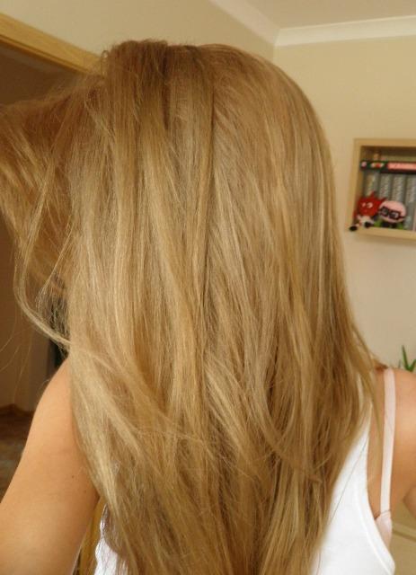 Loreal Jasny Bezowy Blond | Dark Brown Hairs