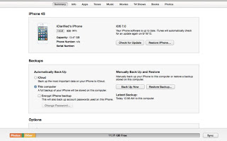 How to Downgrade from iOS Beta 7 to iOS 6