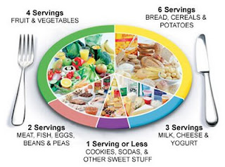 New Food Pyramid Plate 2011
