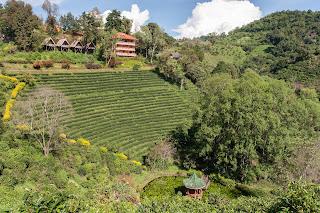 Resort mit Teegarten und Kapelle im Weiher