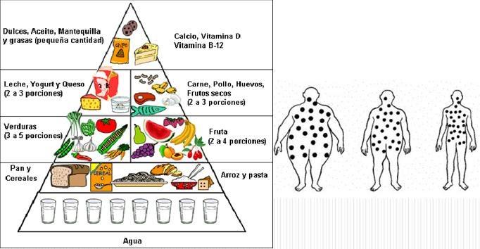 Yaranutricion conoce el contenido nutricional de los alimentos - Contenido nutricional de los alimentos ...