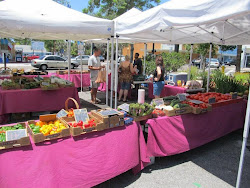 Sundays at The Tarpon Springs Farmers Market