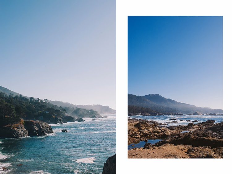what to do in California Point Lobos