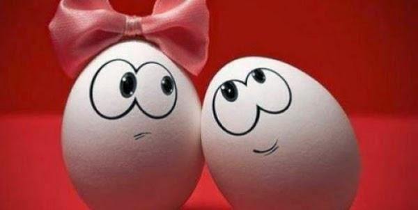 Η συντήρηση των αυγών