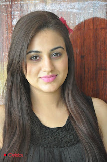 Aksha Latest Pictures at Rey Rey Success Meet  0010