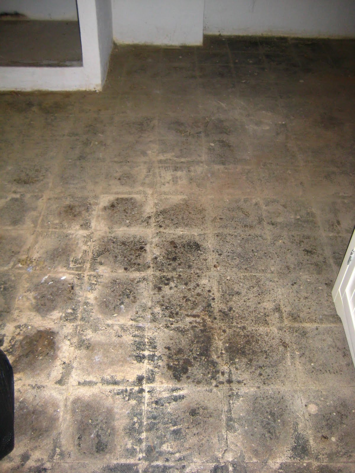 O town diary asbestos abatement or why our house smells so bad by the laundry area and what used to be a bathroom dailygadgetfo Image collections