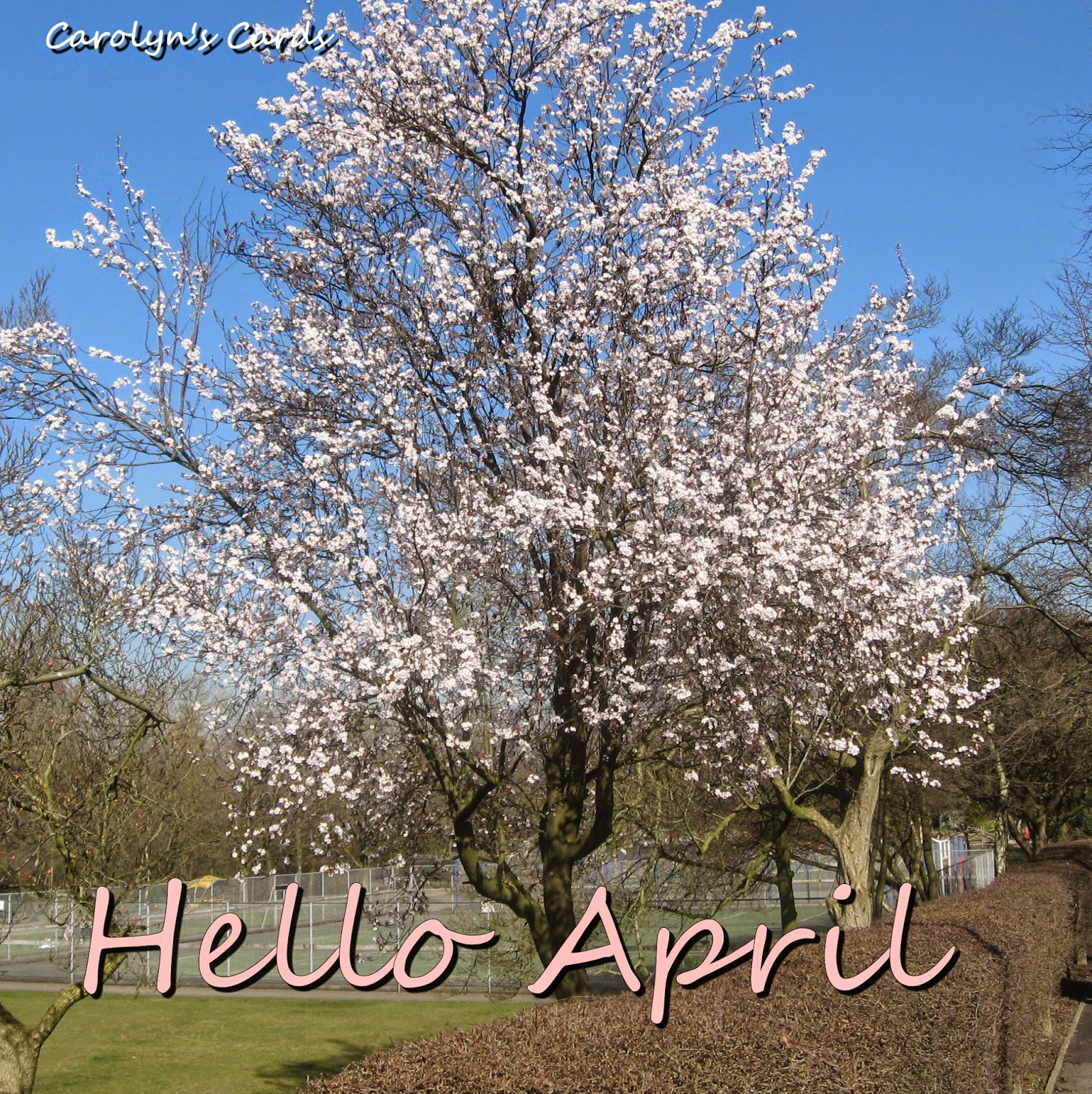 Open Your Eyes. Life Is Beautiful: Goodbye March