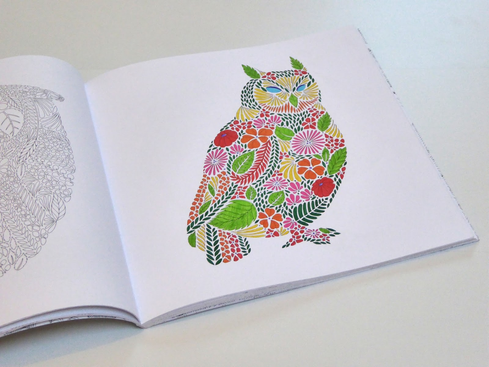 Have You Tried Any Adult Colouring Books Out Do Like Them Let Me Know In The Comments