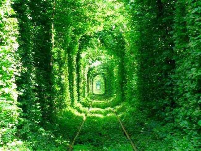 Photo green mile tunnel by serhei cc by