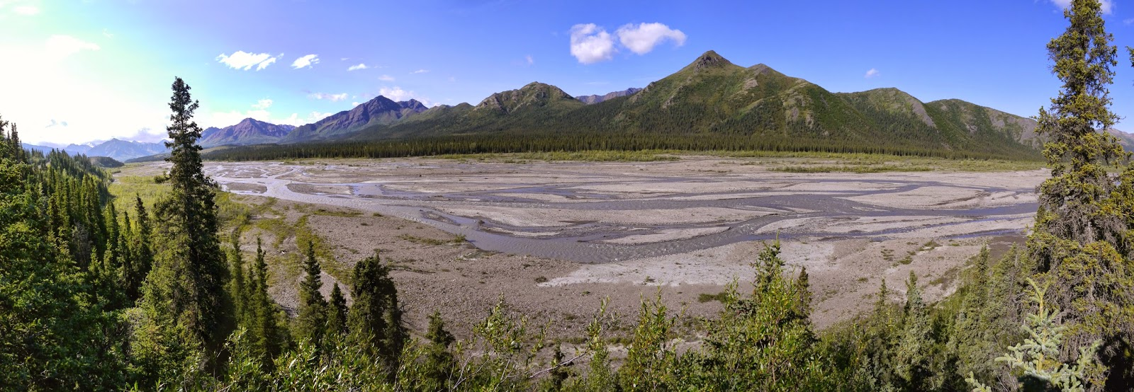 Braided channels of the Teklanika River in Denali National Park.