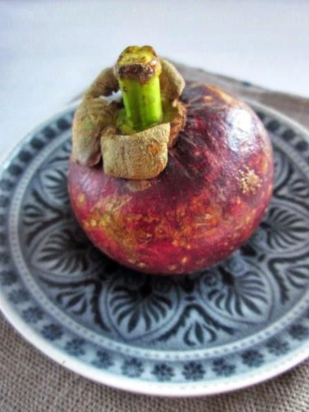Mangostan : Königin der Früchte, Erfahrungen mit Mangostan