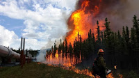 The Aggie Creek fire burns along the Trans-Alaska Pipeline in June. (Credit: USDA/flickr) Click to Enlarge.