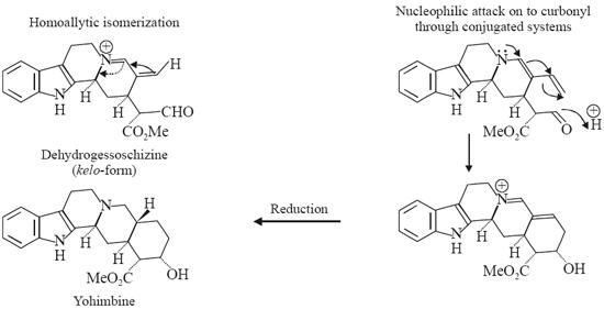Biosynthesis of Yohimbine, Reserpine, Rescinnamine, Vinblastine, Vincristine and Strychnine Dehydogeissoschizine