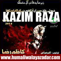 http://ishqehaider.blogspot.com/2013/10/kazim-raza-nohay-2014.html