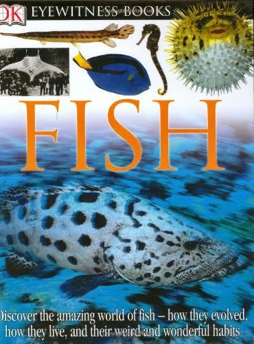 DK Eyewitness Books: Fish by Steve Parker, included in a book review list of ocean books for preschoolers