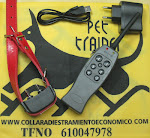 PET TRAINER  Nº2 PLUS RECARG (SIMPLE) 60€