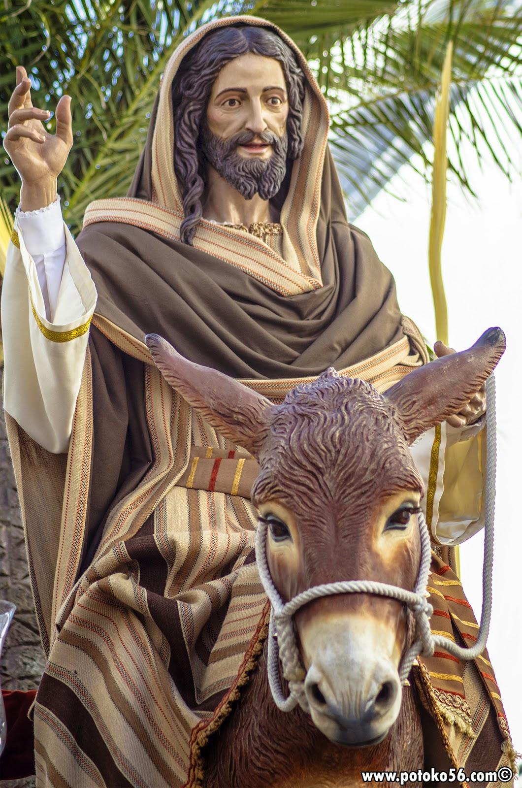 Domingo de Ramos en Rota La borriquita
